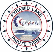Pyramid Lake Paiute Tribe Higher Education